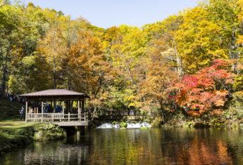 Fukidashi Park Water Reflections