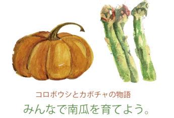 Niseko Pumpkin Planting Thumbnail