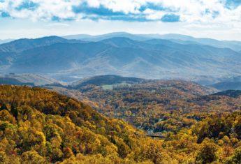 Autumn Leaves Panorama Line