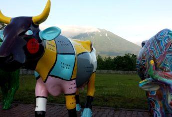 Cow Parade Niseko herd single cow
