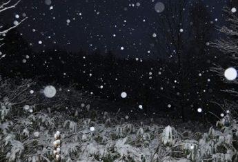 glenfirst-snow-2014-01crop