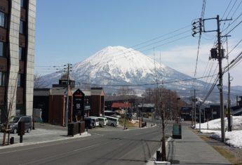 hirafu-zaka-spring