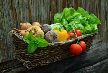 Vegetables 752153 1920