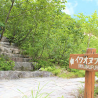 Iwaonupuri Hike July 9 2017 5
