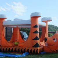 Hours of fun for the kids on the tiger bouncer,