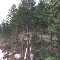 Nac Tree Trekking 62