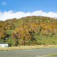 Panorama Line In Autumn