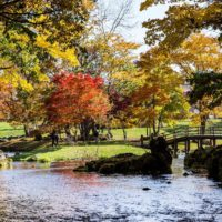 Springs And Bridge At Fukidashi Park 2