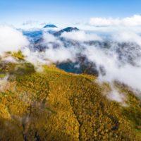 Lake Hangetsu Autumn Leaves