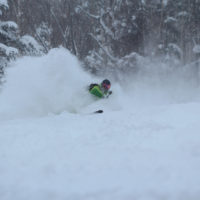 Roko Snow