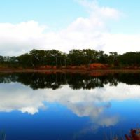 Shinsen Numa Marsh Autumn