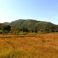 Shinsen Numa Marsh Autumn2