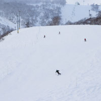 Niseko Grand Hirafu slopes captured on November 15th.