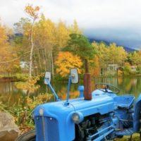 Youtei Sugatami Pond 2