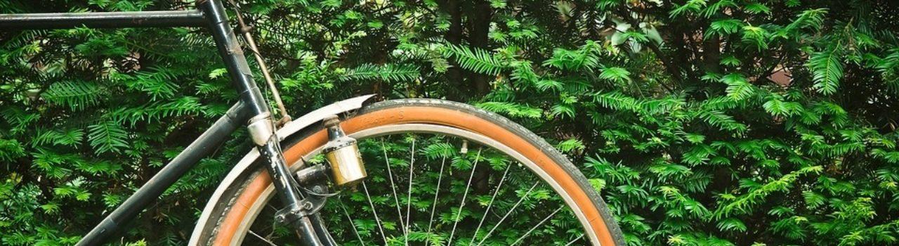 Bike 1549102 960 720