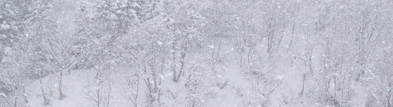 Wintersnow Gondolaopening 12 02 17 4 1