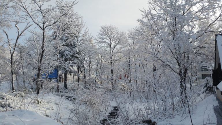 2015-12-17-december-snow-creek-winter-wonderland