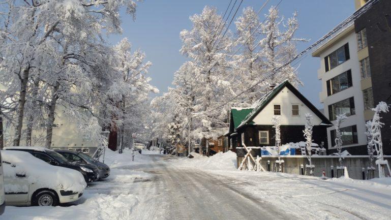 2015-12-17-december-snow-in-trees