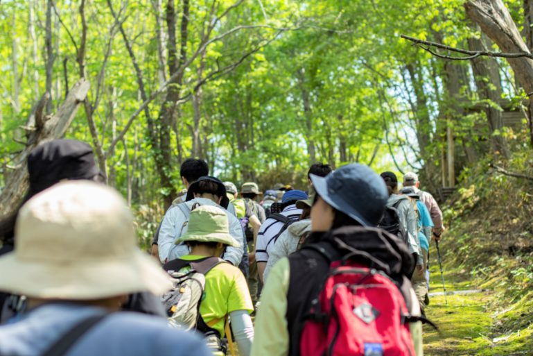 Hiking Along The Niseko Town Arishima Footpath In May
