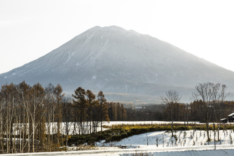 Mt Yotei with snow
