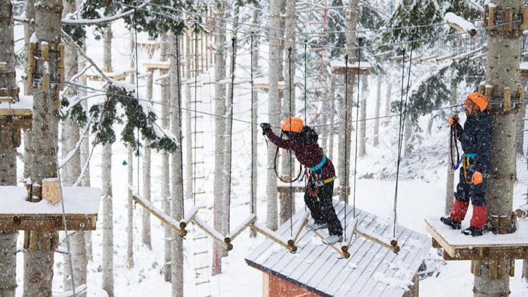 Nac Tree Trekking 4