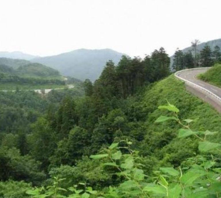 Niseko Panorama Line