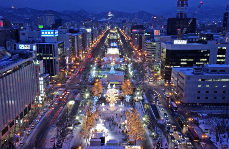 Sapporo Snow Festival Night