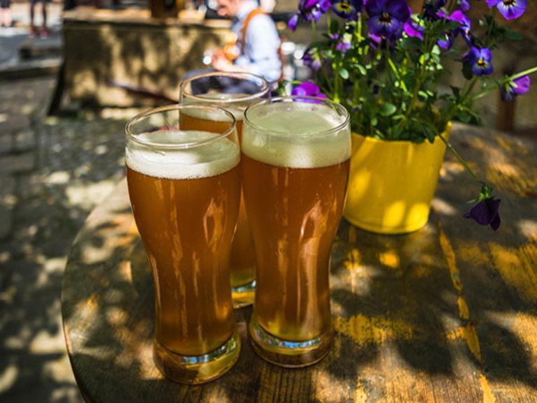 Beer 1379581 1920