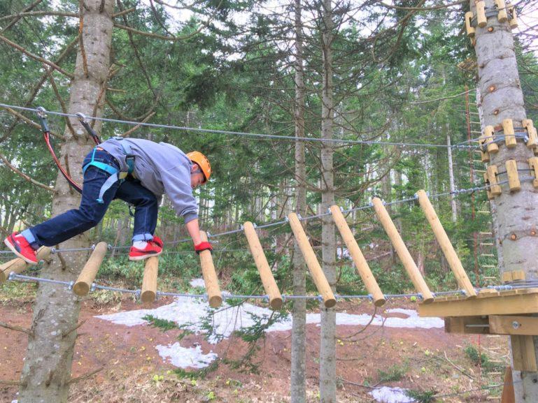 Edit Nac Tree Trekking 48