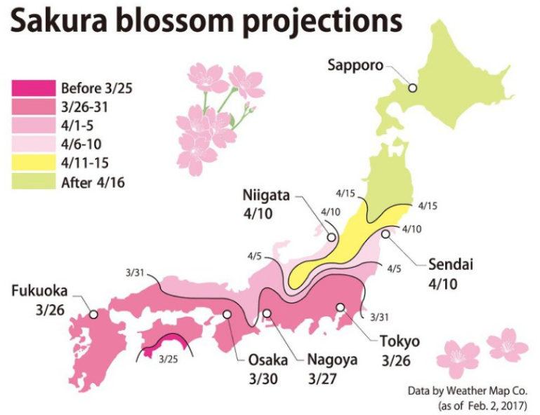 Sakura Zensen 2017