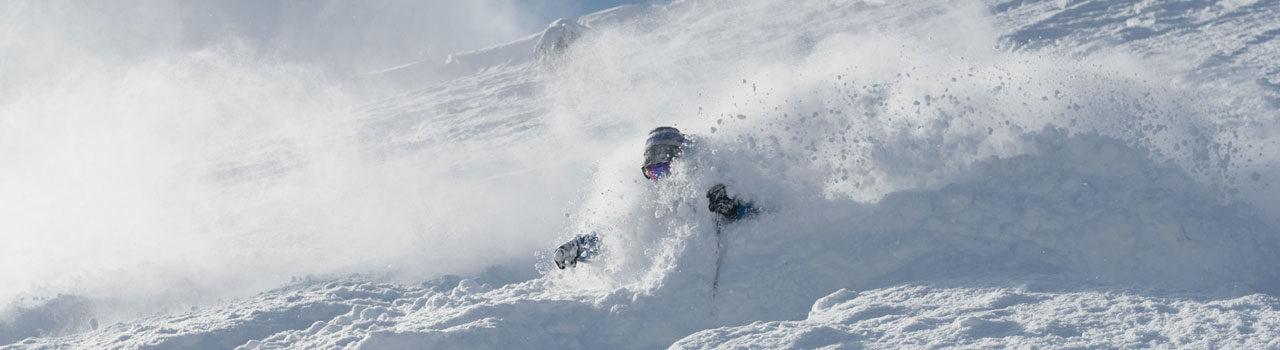 Powder skier Niseko