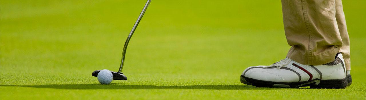 Golf putter Niseko