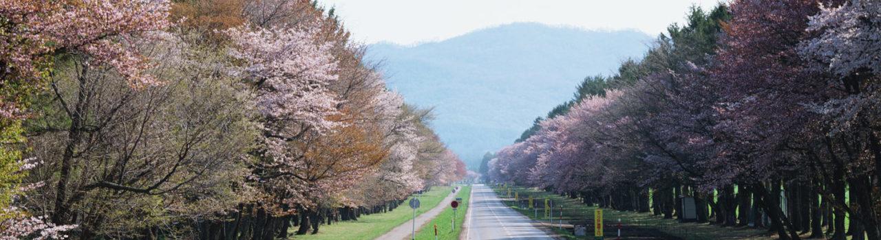 hokkaido-roads