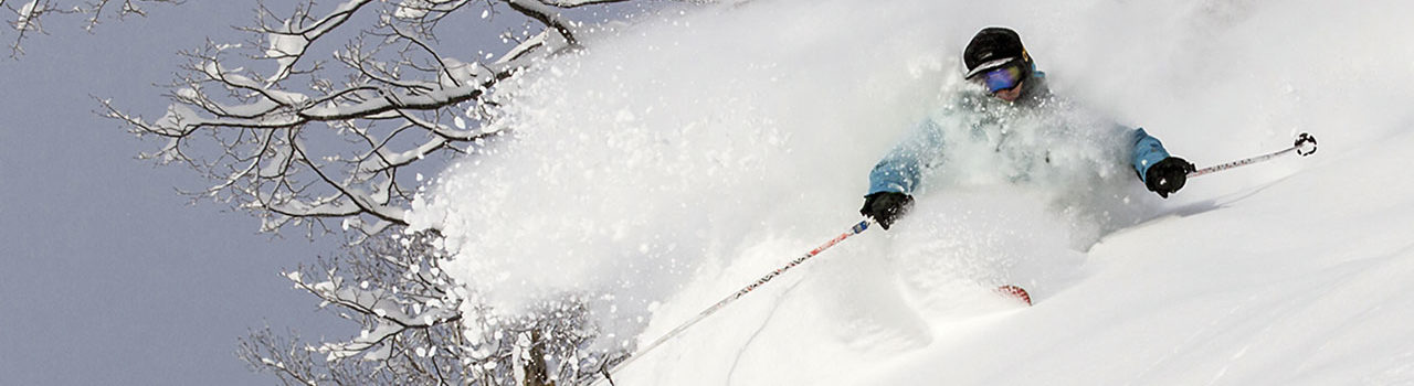 Niseko powder guiding