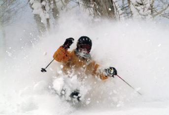 skiier-yellow-jacket